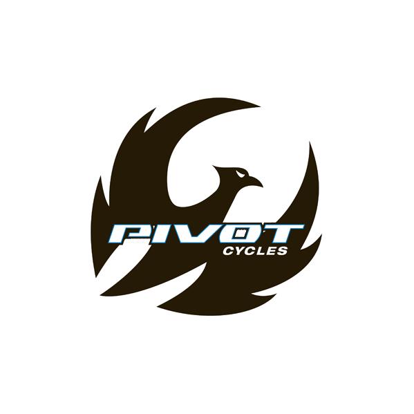 piv_logo